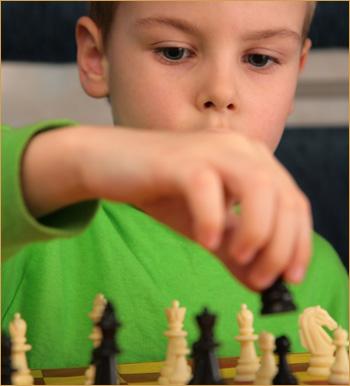 copil_tricouverde_chess