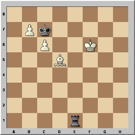c4indy-mtudorache56a