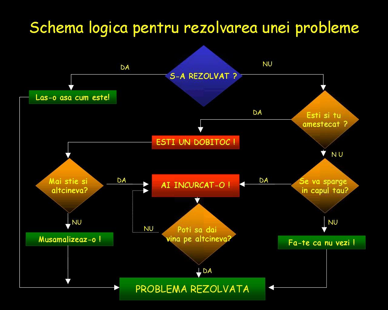 schema-logica-pentru-rezolvarea-unei-probleme