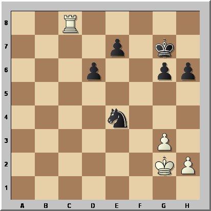 Petkov-Manolache43b
