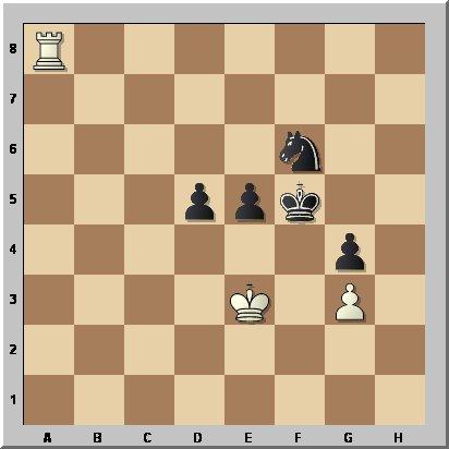 Petkov-Manolache53b