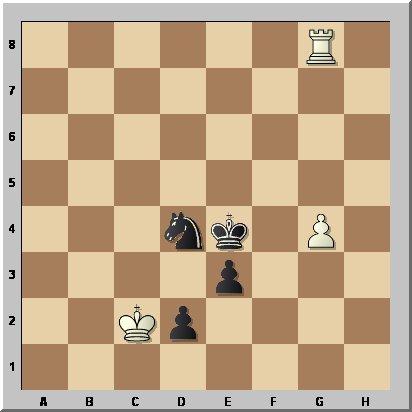 Petkov-Manolache80b