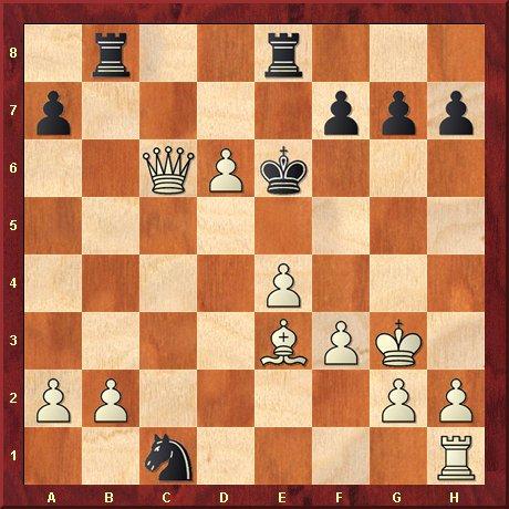 albul muta si da mat in 3 mutari-problema 27